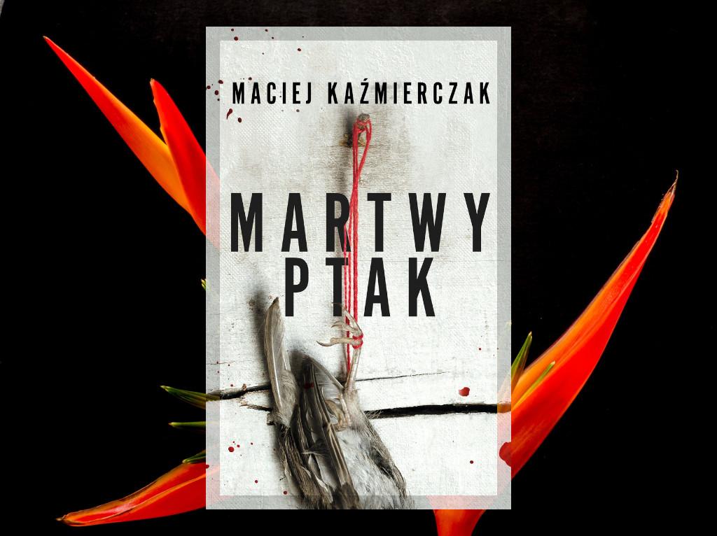 Recenzja: Martwy ptak - Maciej Kaźmierczak